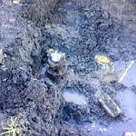 civil plumbing service